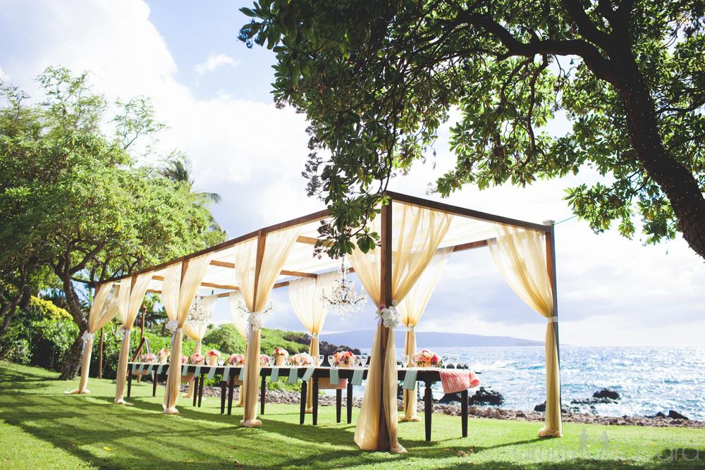 bliss-maui-wedding-kukahiko-estate-dmitri-and-sandra-photography-phoebe-simon-21.jpg