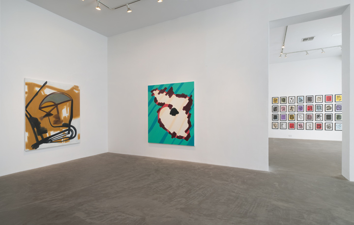 _DCummings_Installation view_2014_03.jpg