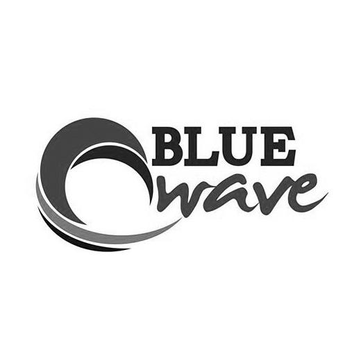 BlueWaveSurfSchoolLogo.jpg