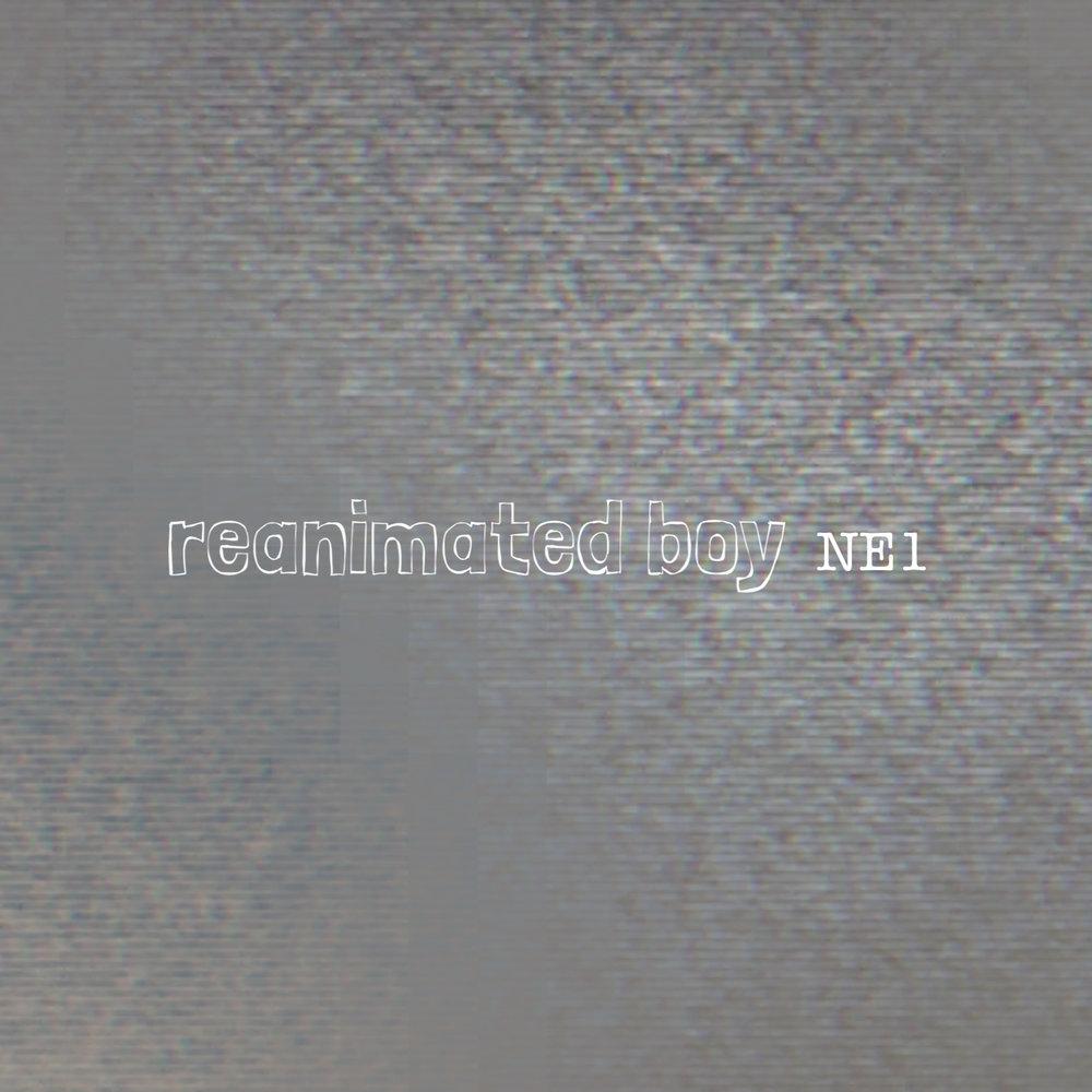 NE1_artwork.jpg