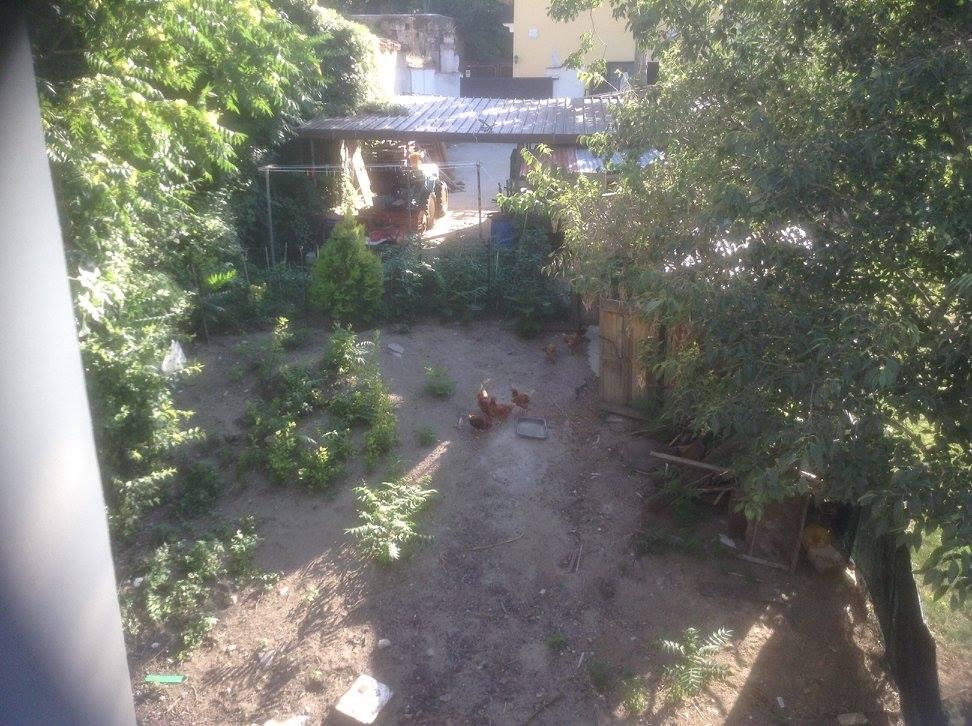 Abruzzo alarm clock.jpg