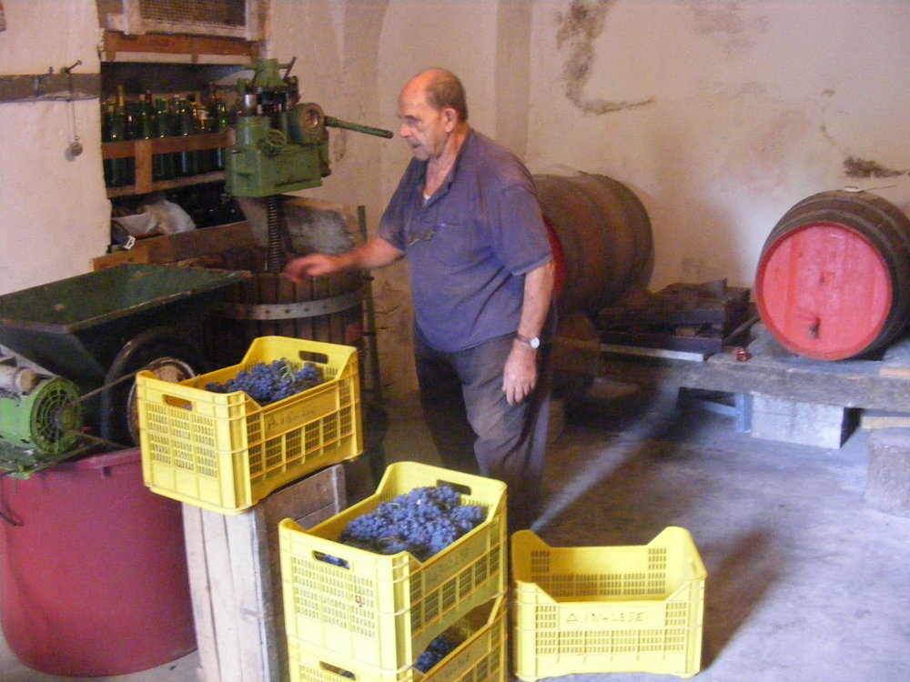 Antonio in his garage torturing perfectly good grapes into rot-gut red.