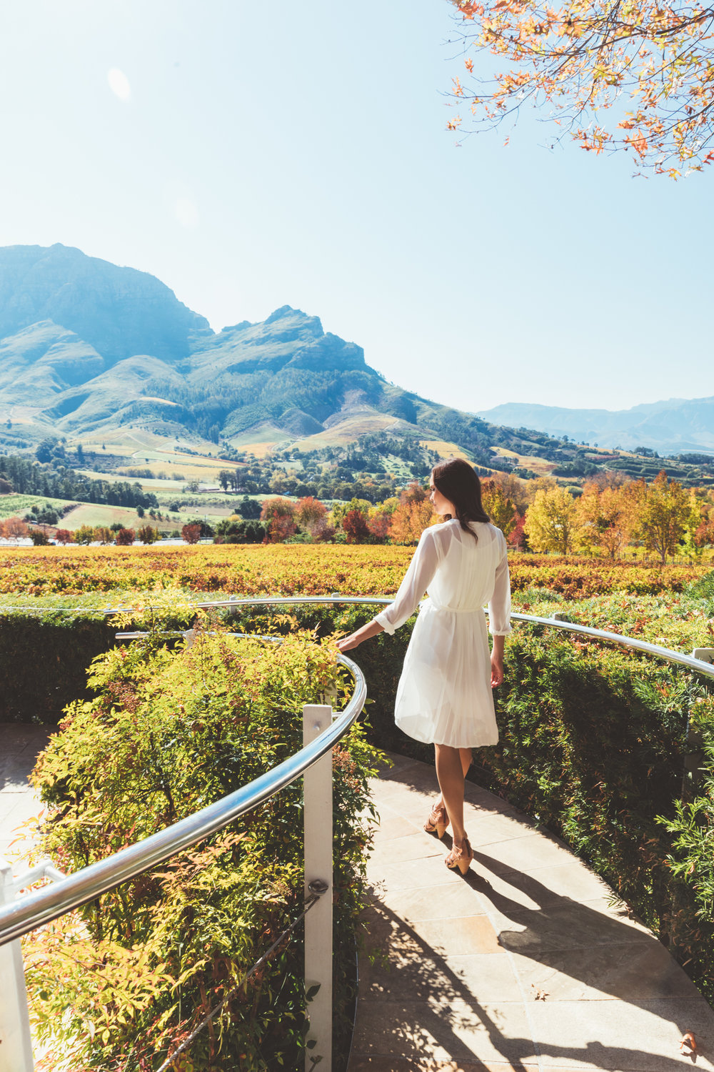 A beautiful girl dressed in a white dress looks out over the magnificent mountain views from the Delaire Graff Restaurant
