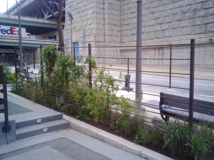 Fringe+Arts+Building+Garden+Trellis.jpg