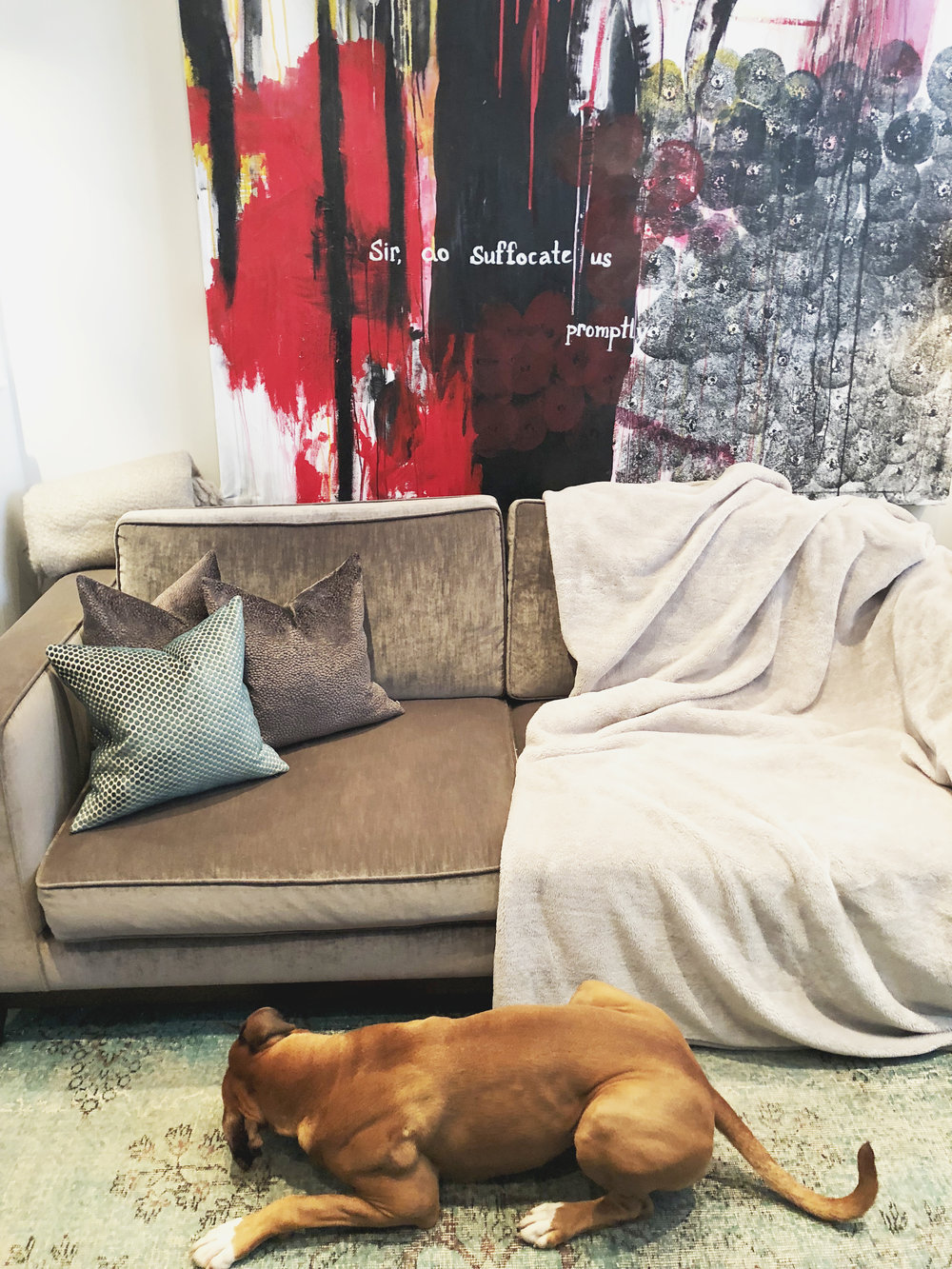 Protect your sofa - I bought my velvet The Sofa & Chair Company sofa before Bailey came along, so I needed to find a solution to have cuddles without completely destroying it. These blankets are pet hair resistant and can be thrown in the washing machine…easy!
