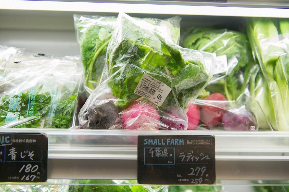 Tokyo Part 1: A Vegan's Guide