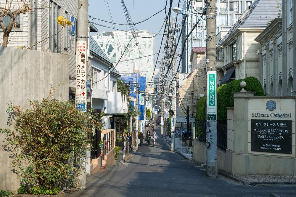 TRAVEL: Tokyo Part 1; A Vegan's Guide
