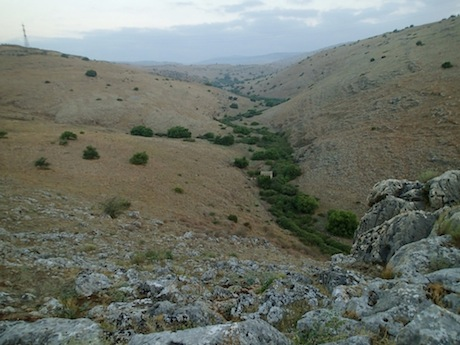 The Wadi Hamam begins gently in eastern Galilee near the village of Eilabun.