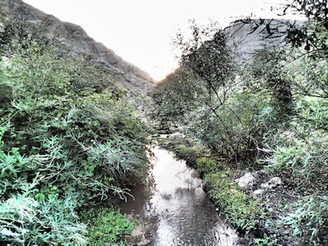 The stream of the Wadi Hamam.
