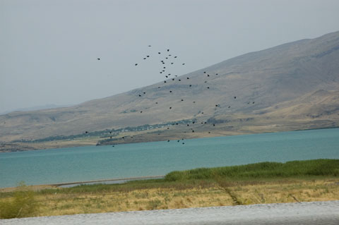 Northeastern shore of Lake Van.