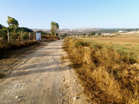 A view to the road less traveled. It runs south from my position in the upper reaches of the Suffuriyyah drainage basin. On the horizon, Nazareth spills over the ridge.