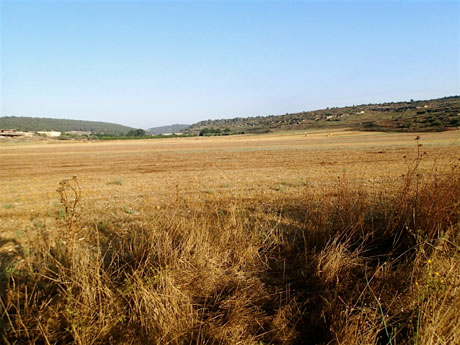 View to harvested fields beside the road. Note the large bales in the distance. The valley floor is covered with colluvial sediments washed down from the hillsides.