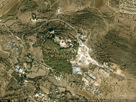 """Google map of Sepphoris/Suffuriyyah. Excavations (light beige) are revealing the Greco-Roman period capital. Needle forest hides the """"erased"""" history of the site."""
