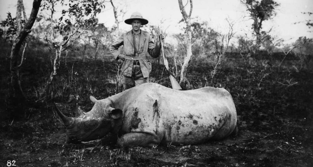 An unnamed hunter poses with his kill. Image ca.1890 accessed from  here  on 3/25/2018.