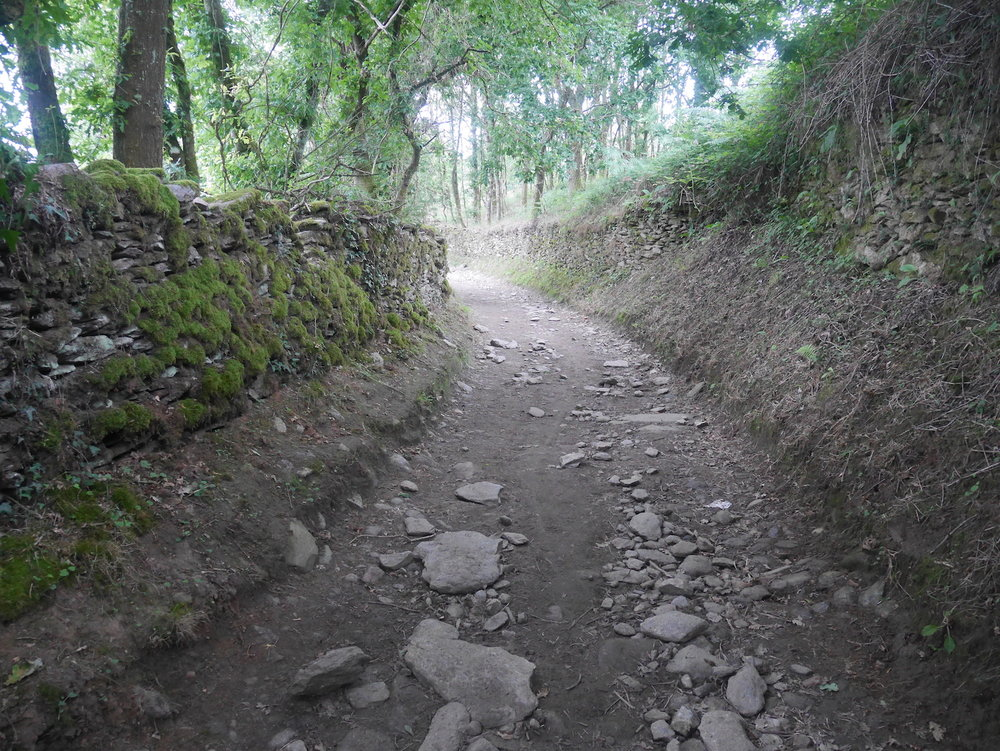 Trail to Portomarin 2.JPG