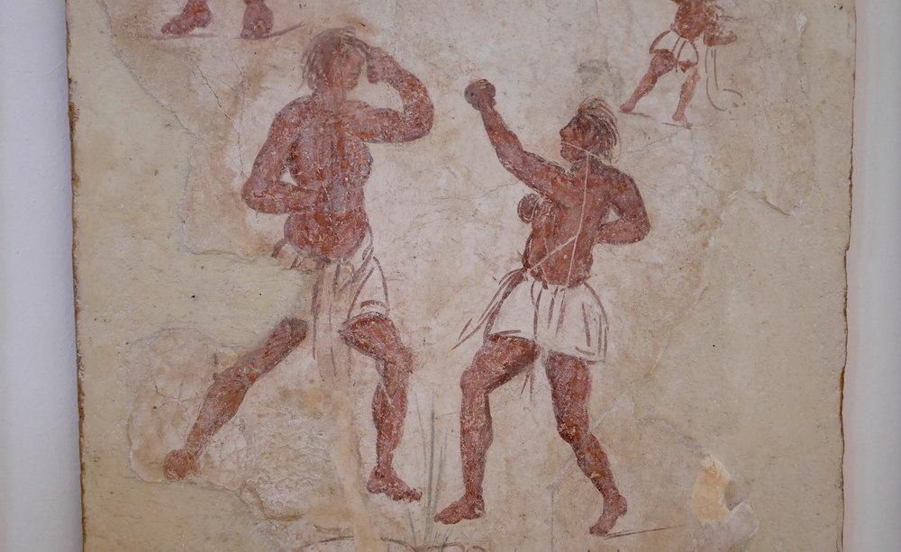 Boxers 2.JPG