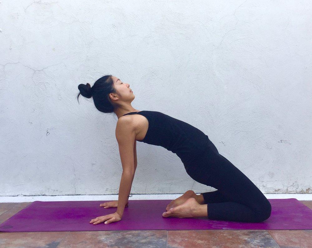 Camel- Annie Au yoga
