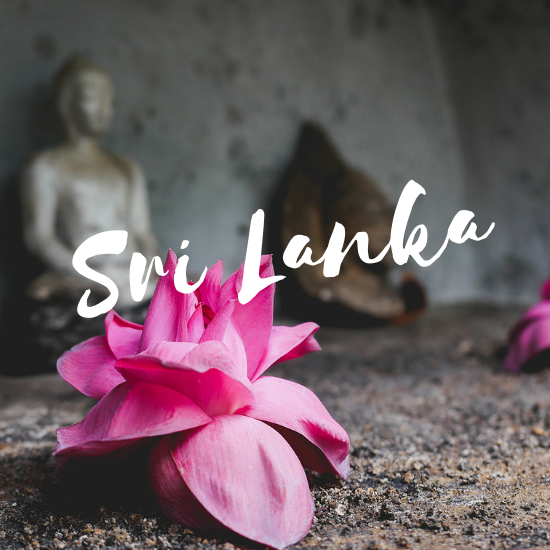 Sri Lanka Yin Yoga Teacher Training Annie Au 2019