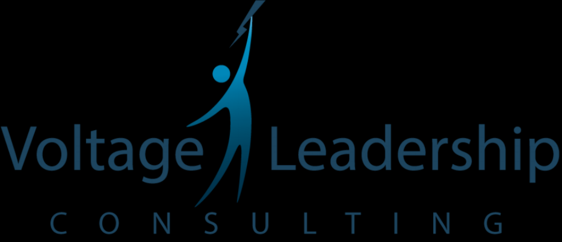 Voltage Leadership Consulting
