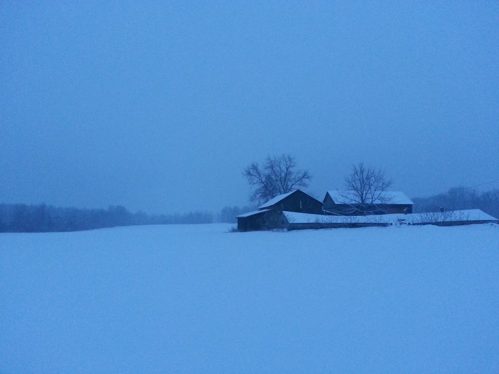 snowstorm.jpeg.jpg