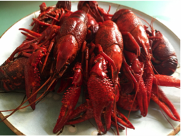 Crawfish_Big Fisherman Seafood_NOLA