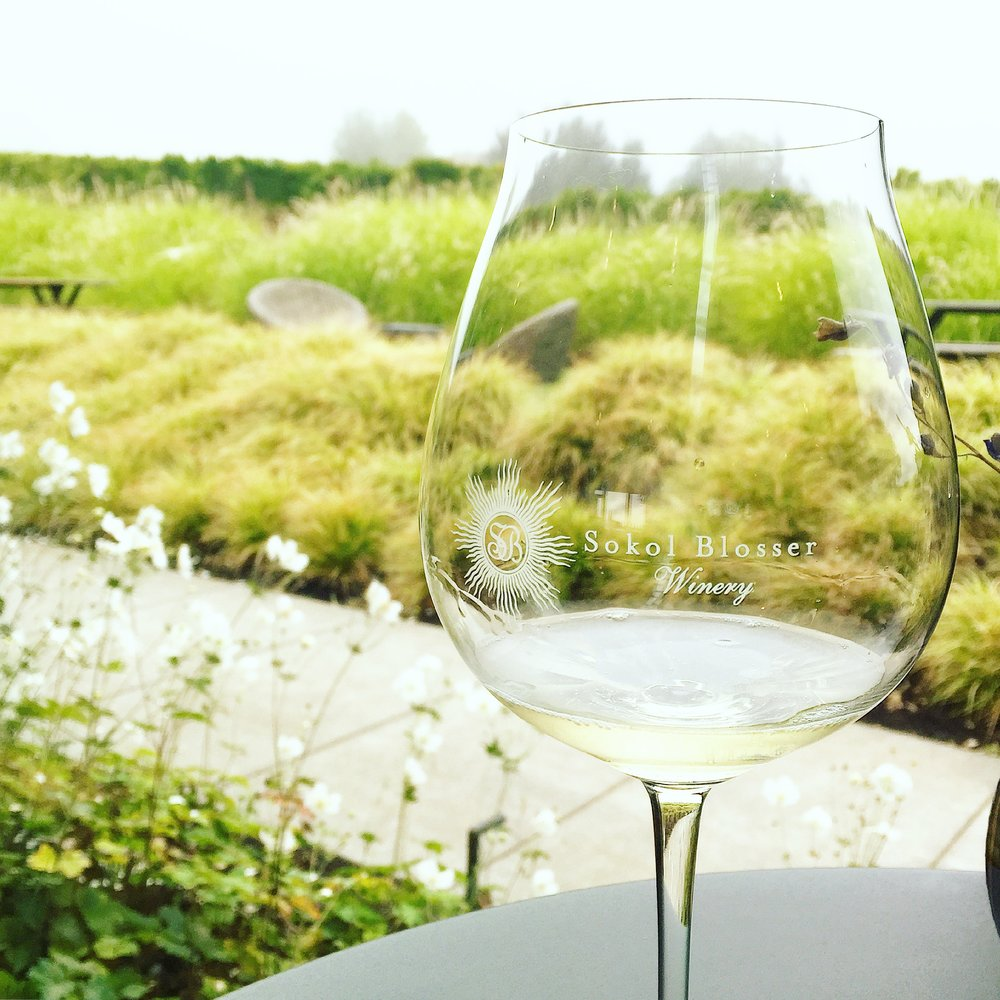 Sokol Blosser Winery (Photo Credit Carolyn Stine)
