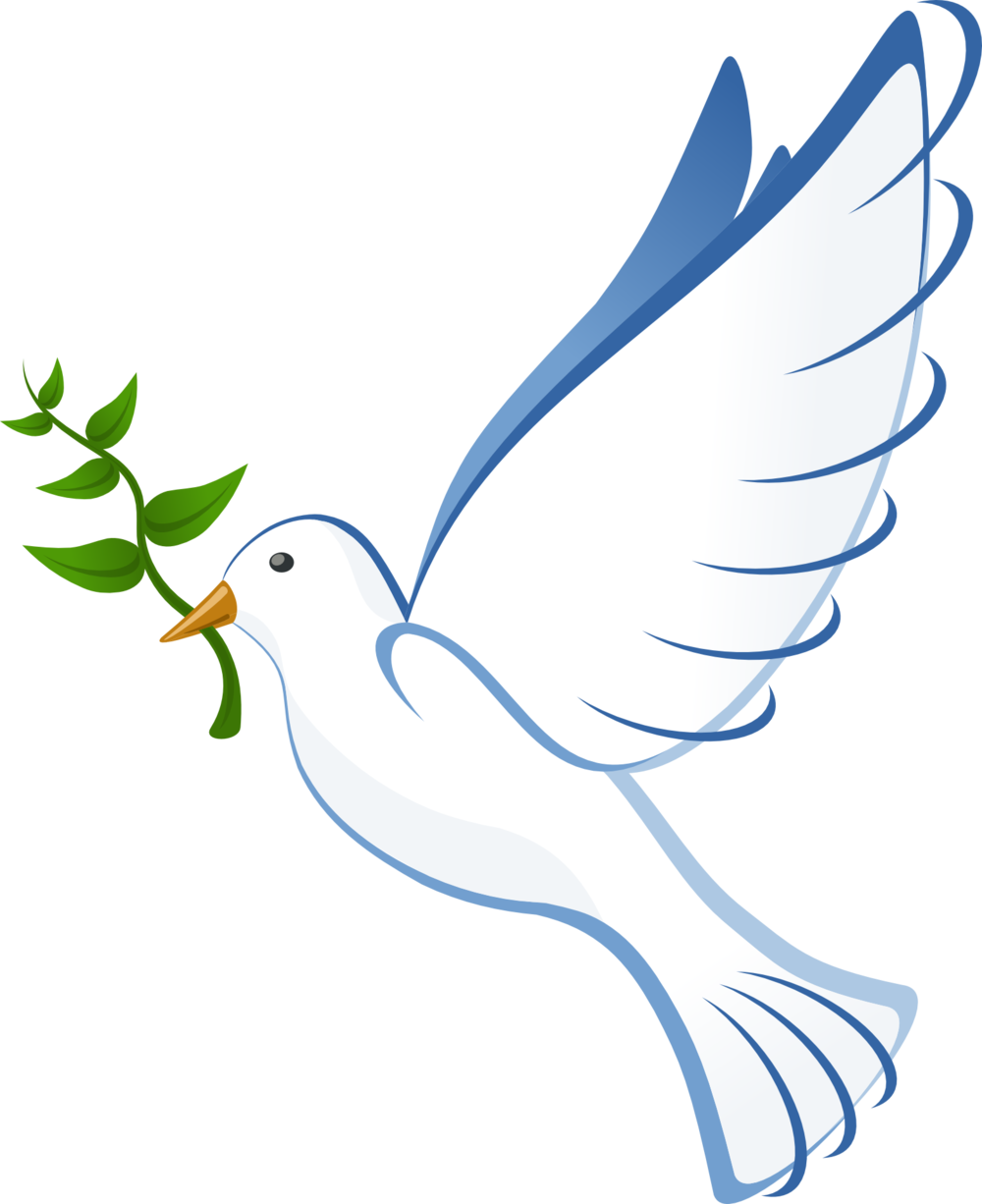 dove-41260.png