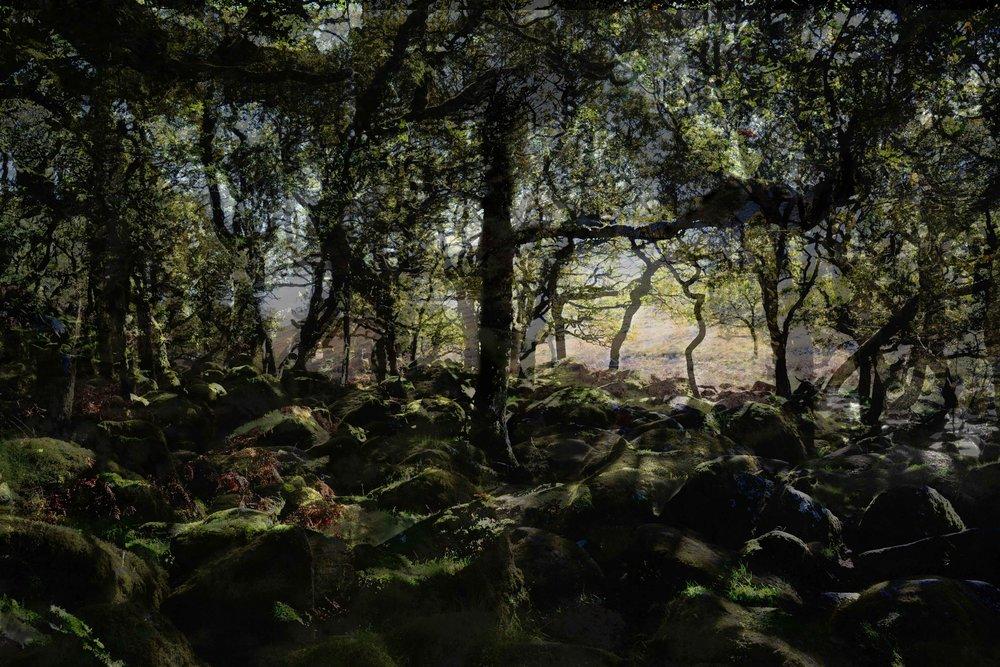 © Deborah Baker. 'Blackator' from the series 'Moor Visible'