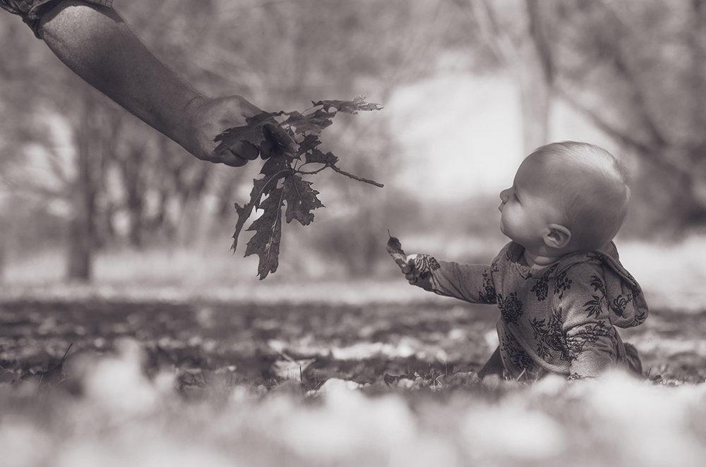 ©Nathan Sedlak