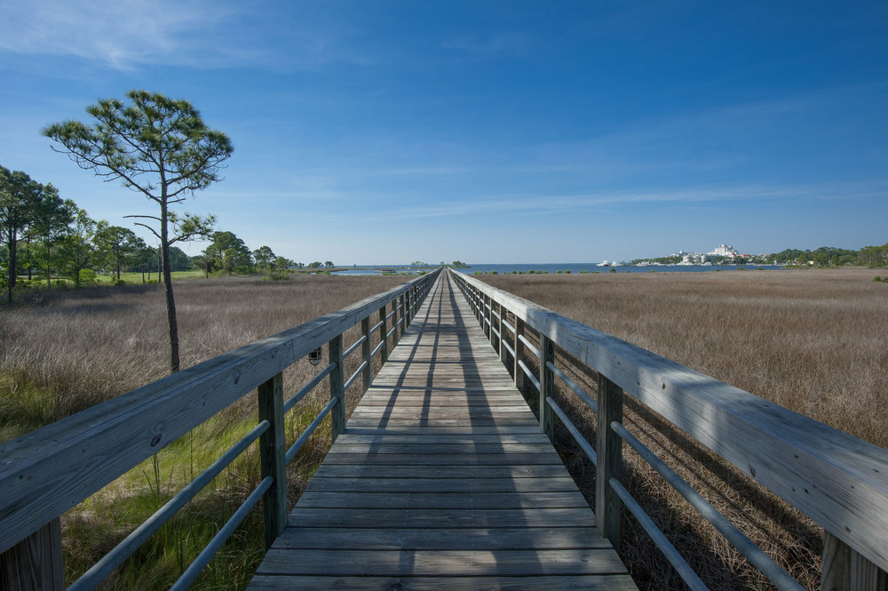Boardwalk Walk Way in Sandestin Resort