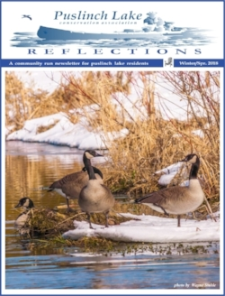2018 Winter/Spring Issue