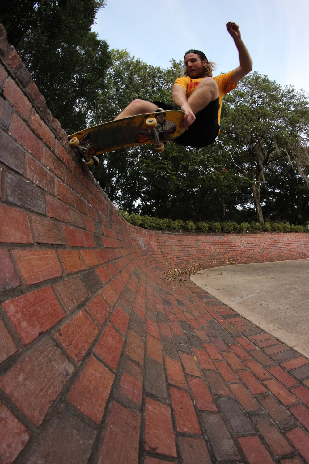 Gabe - Crail tail in Orlando, FL