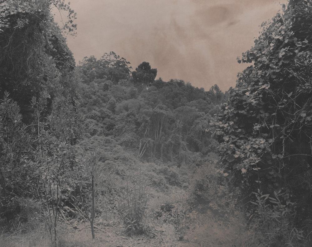 31 x 25 cm, silver gelatin print, 2016