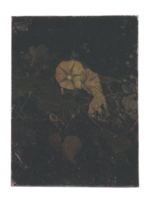 Fragment #2