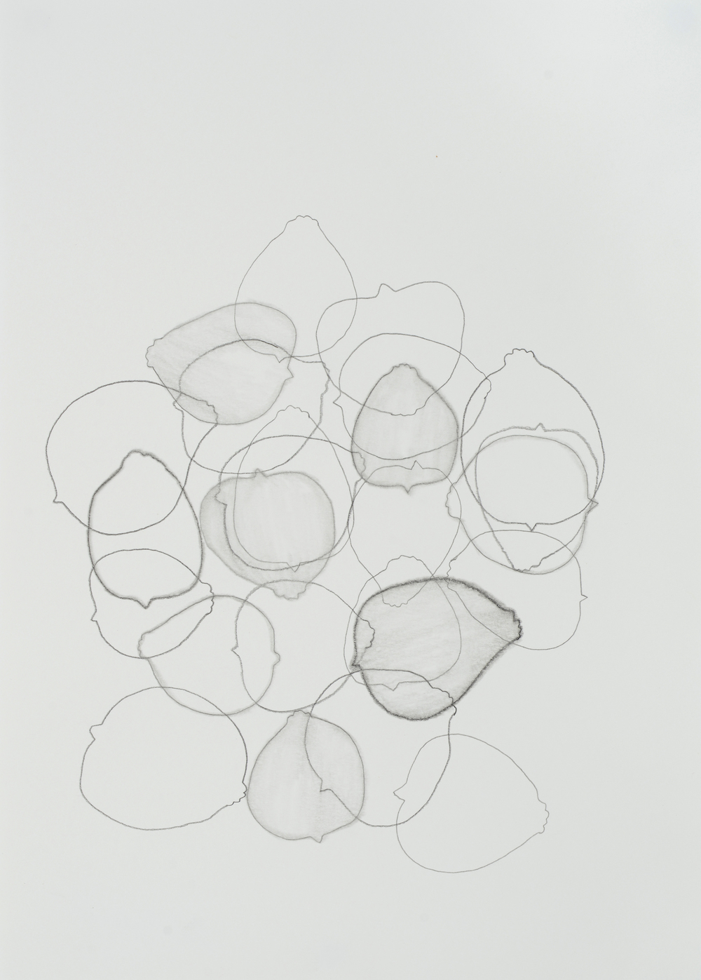 "subtle bodies | lemon (01), 2015 | graphite on paper | 11.5"" x 8.25"" 