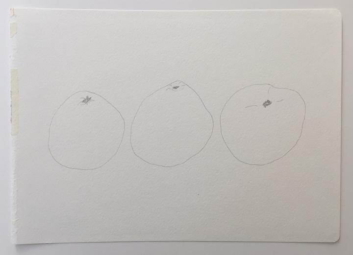 "ensō | grapefruit (02), 2015 | graphite on paper | 8.25"" x 11.75"""