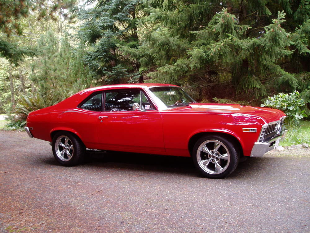 Ted Mann 81 Chevy Chevelle