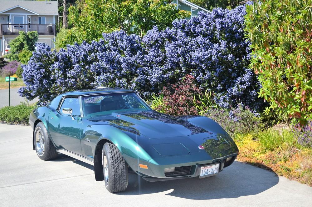 Richard & Beverly Hughes 1976 Chevy Corvette