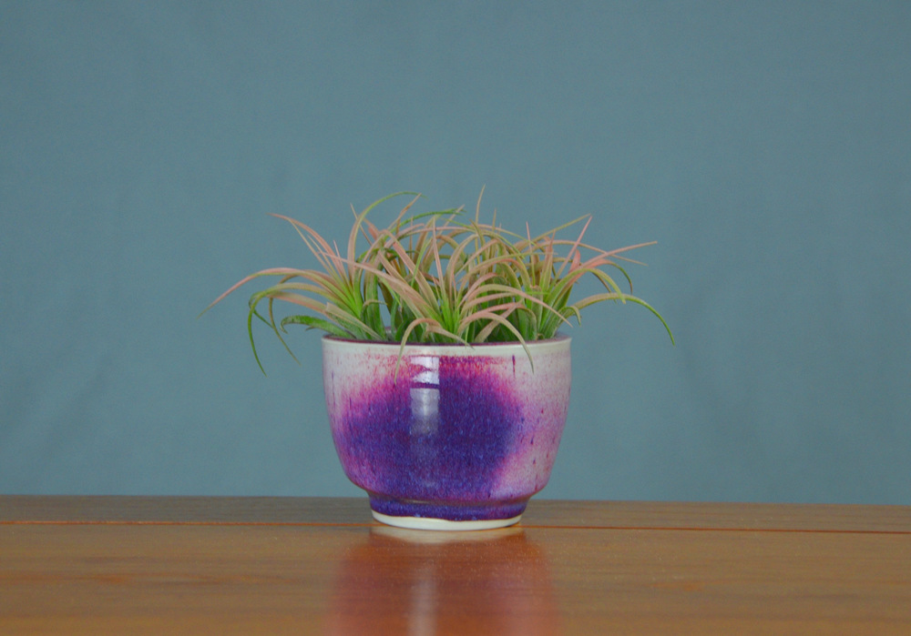 Porcelain Purple Succulent Planter | Hand thrown porcelain on a potter's wheel.  High Fired, Cone 10, Lipstick Purple Glaze, Hand Trimmed, Ceramic | Caldwell Pottery