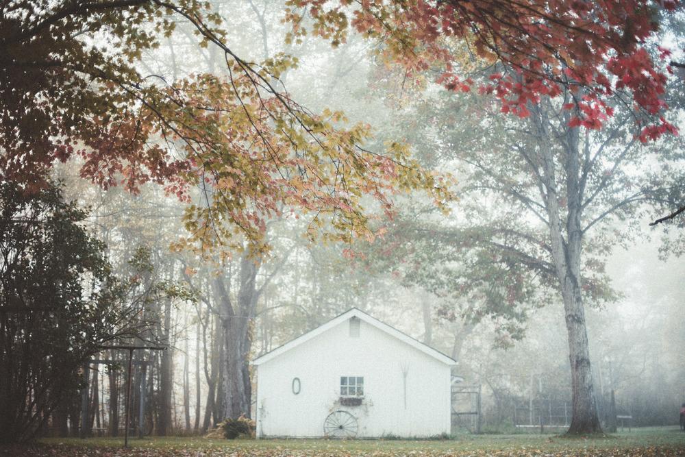 fog-railroad-65.jpg