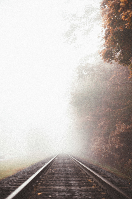 fog-railroad-110.jpg