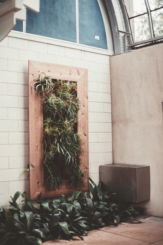 greenhouse-17.jpg