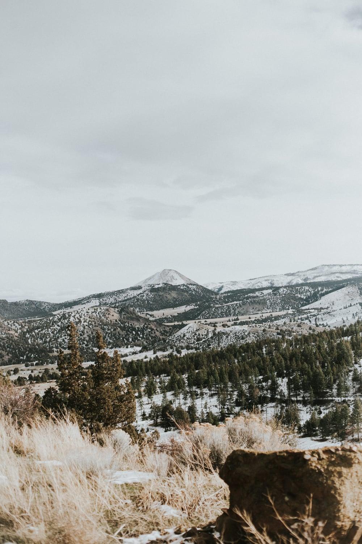 hills-107.jpg