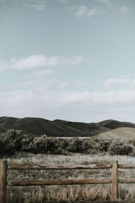 hills-141.jpg