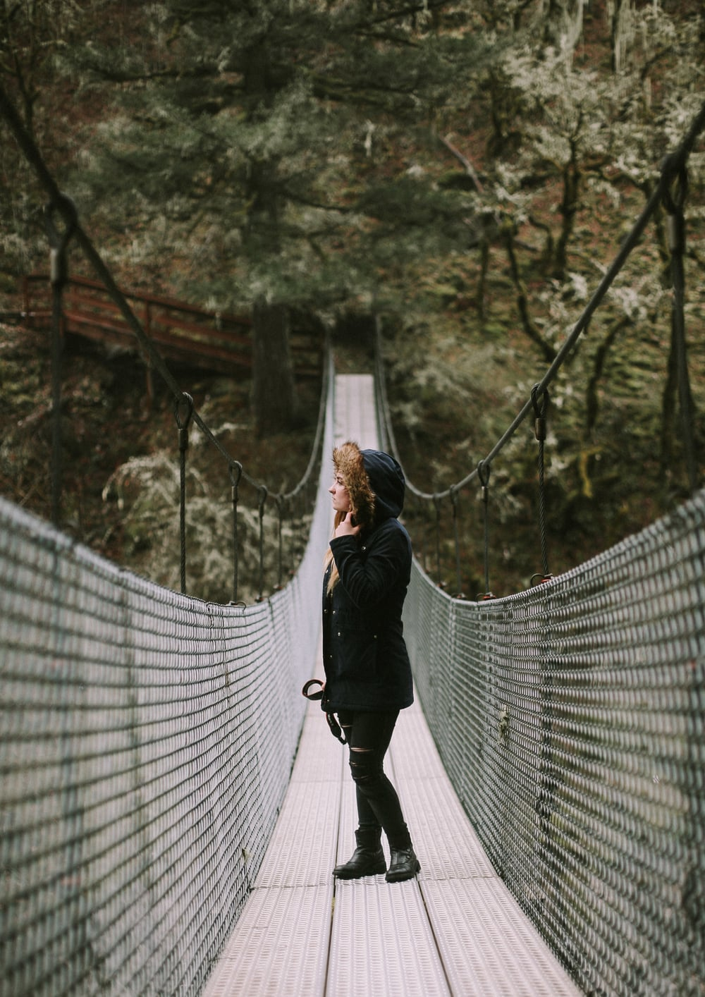 bridge-12.jpg