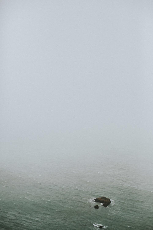 pointreyes-fog-44.jpg