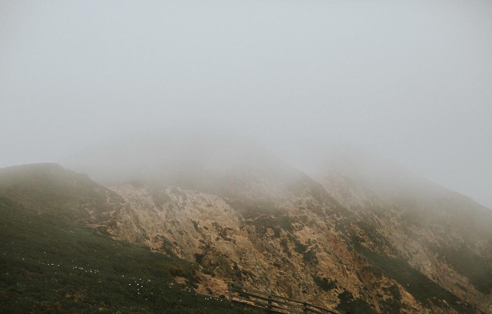 pointreyes-fog-29.jpg