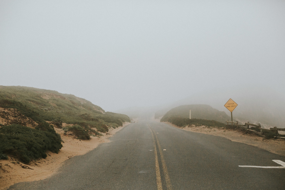 pointreyes-fog-19.jpg
