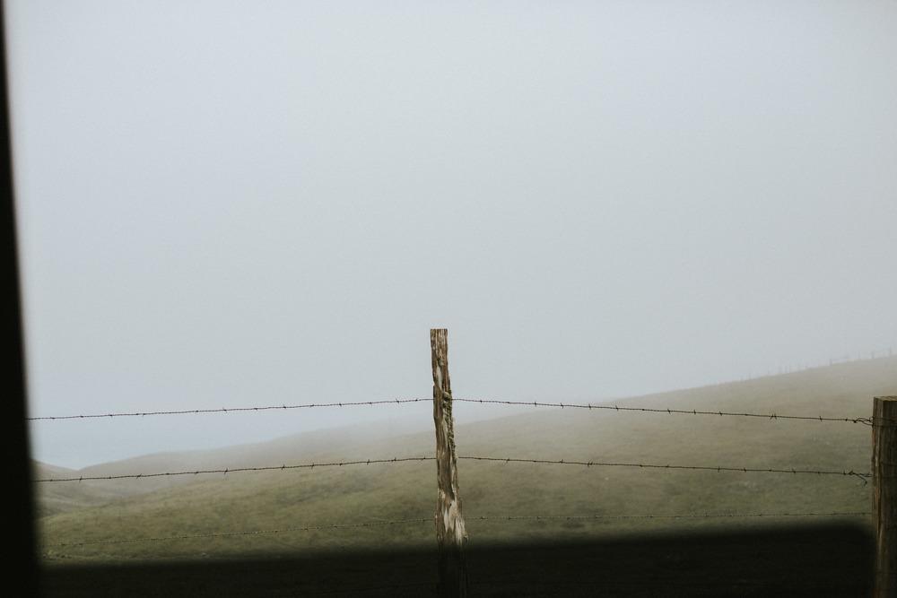 pointreyes-fog-3.jpg