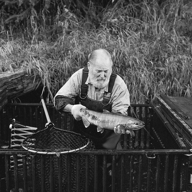 Tom Jay - sculptor, poet, salmon conservationist #hasselblad